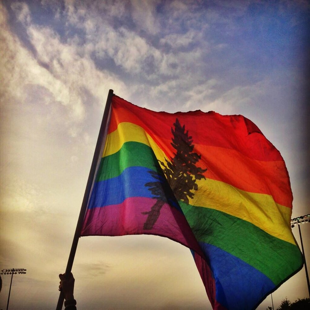 cascadia-pride-flags